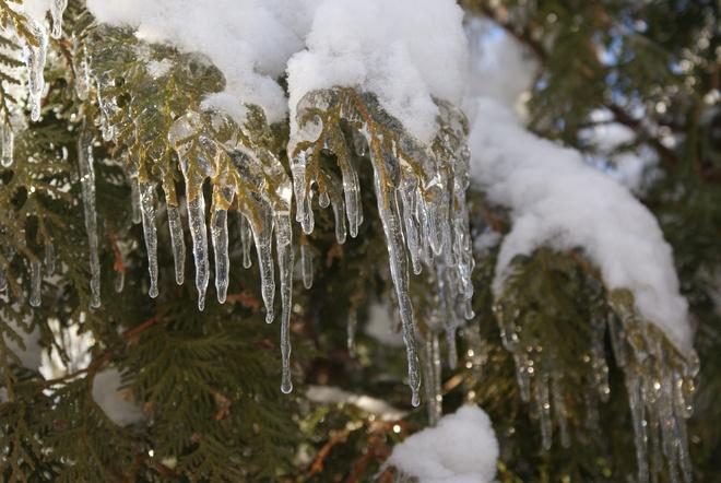 ice storm Oshawa, Ontario Canada