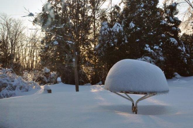 Morning after snow Erin, Ontario Canada