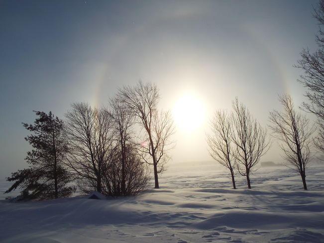 Frosty halo Grand Valley, Ontario Canada