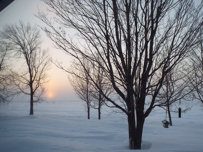 Snow Squall Sunrise Grand Valley, Ontario Canada