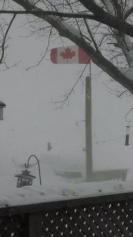 snowing and blowing on the bay Waubaushene, Ontario Canada