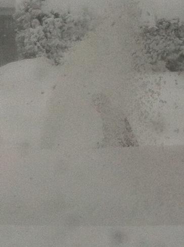 Oh So snow! Owen Sound, Ontario Canada