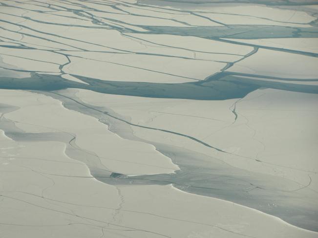 Arctic Coldness Toronto, Ontario Canada