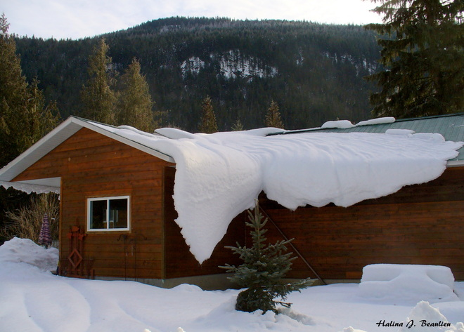 Too much snow Enderby, British Columbia Canada