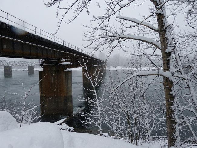 railroad bridge revelstoke Revelstoke, British Columbia Canada