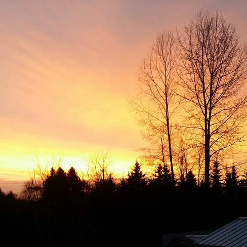 a beautiful starting for the day Surrey, British Columbia Canada