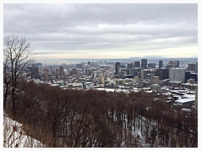 mont - royal Montréal, Quebec Canada