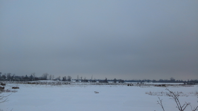 Nice Shot Of The Snow Pond And The Sky Bowmanville, Ontario Canada