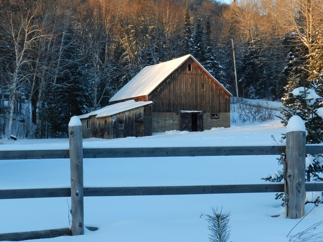 Sweet Light, Old Barn Bummers' Roost, Ontario Canada