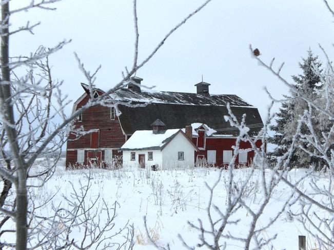 Beautiful Winter Day Regina, Saskatchewan Canada