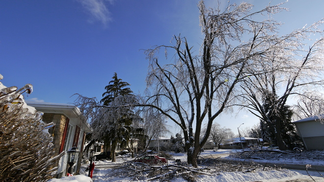 5 Days After Ice Storm 2013 Brampton, Ontario Canada