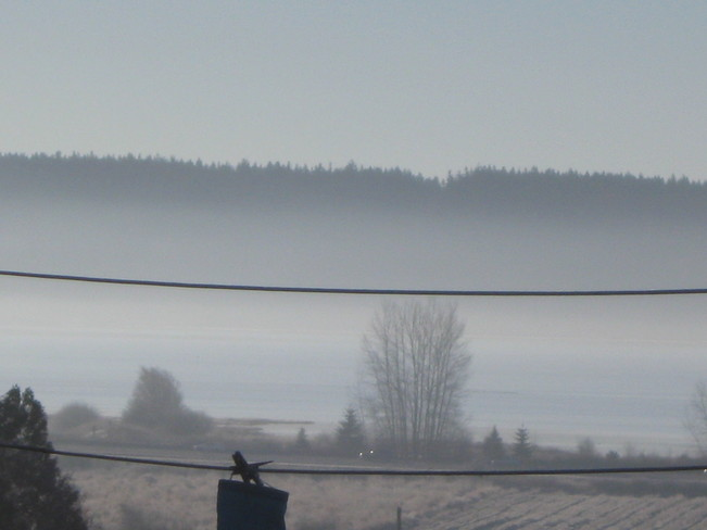 more fog Surrey, British Columbia Canada
