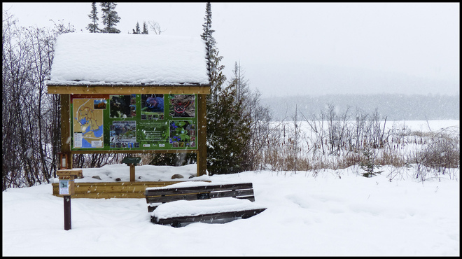 Welome to a snowy day at Sheriff Creek Elliot Lake, Ontario Canada