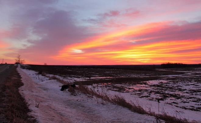 Sunrise Woodstock, Ontario Canada