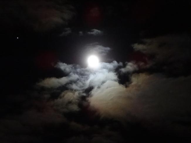 Shoot the Moon Deep River, Ontario Canada