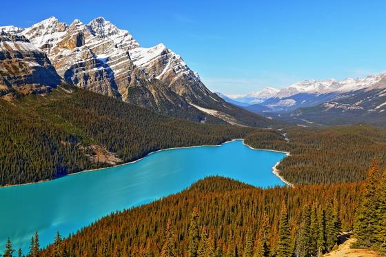 Peyto Lake in Banff