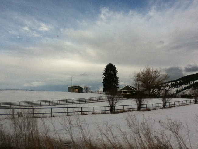 fields of snow South Vernon, British Columbia Canada