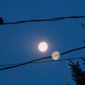 le couché de la lune