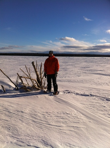Sunshine and a Sunday Snowshoe Sault Ste. Marie, Ontario Canada