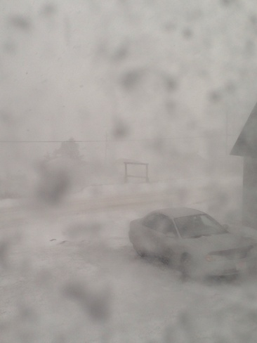 white out in rocky harbour. Rocky Harbour, Newfoundland and Labrador Canada