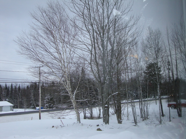 After the Dusting of Flurries Richibucto Road, New Brunswick Canada