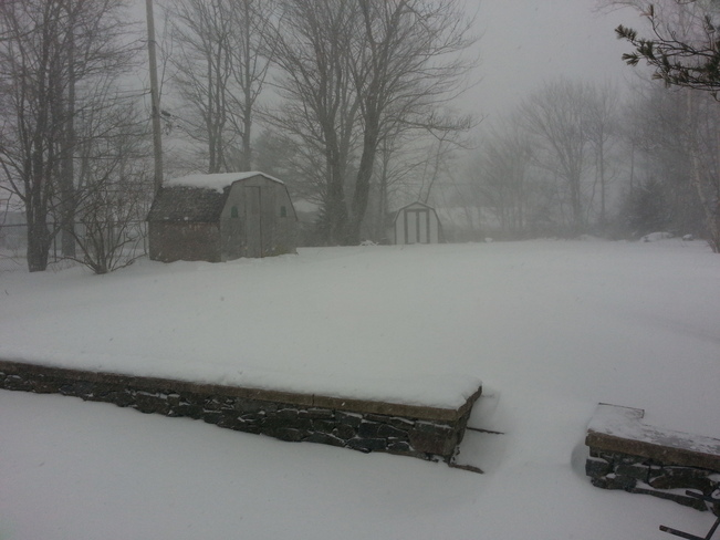 snow storm in my back yard Lower Sackville, Nova Scotia Canada
