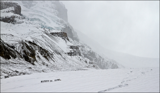 2b. Columbia Icefield Ice Walk