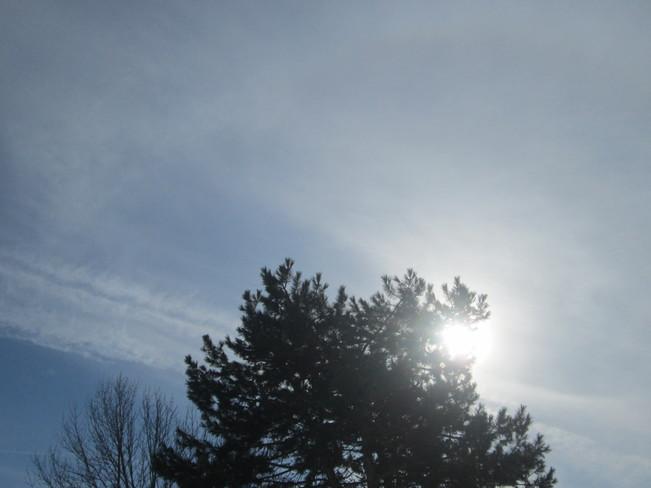 Sunny day Belleville, Ontario Canada