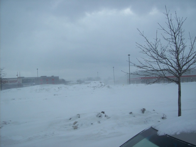 Blowing and drifting snow Belleville, Ontario Canada