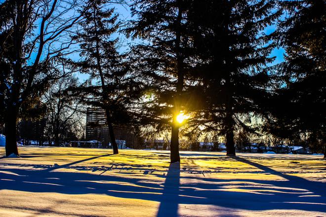 Facing the sun Ottawa, Ontario Canada
