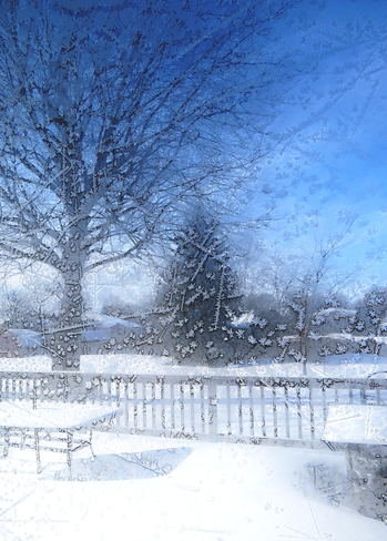 Frosty view through the screen door Goderich, Ontario Canada