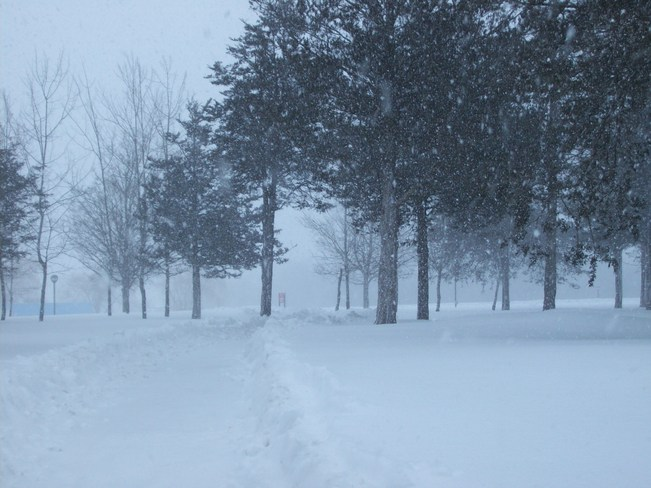 Poor Visability as seen in the North from the Loyalist college Campus Belleville, Ontario Canada
