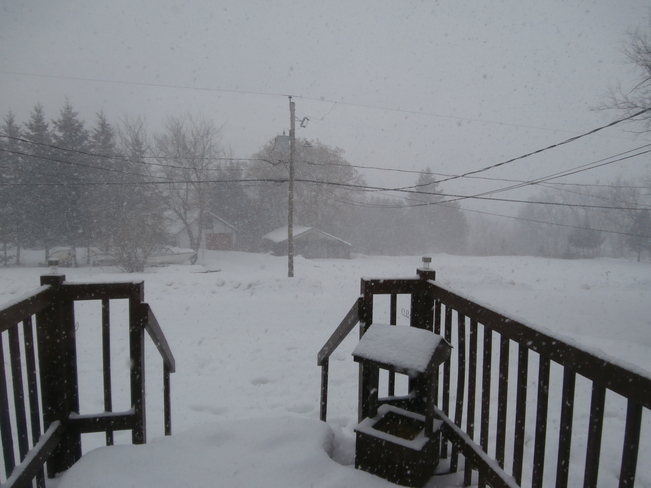 Snowy Snow Squall Shawville, Quebec Canada