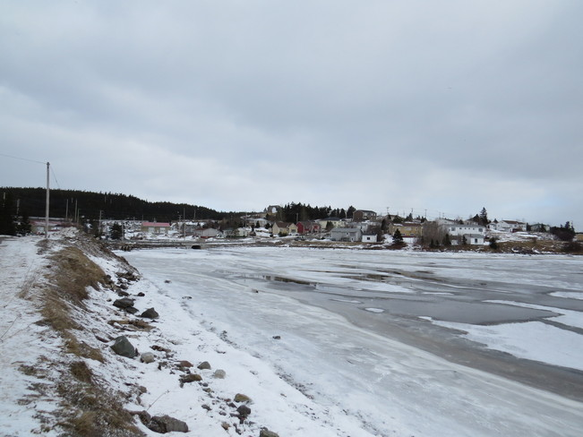 Ice on the shore Marystown, Newfoundland and Labrador Canada
