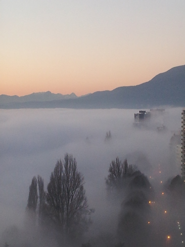 West End Fog Vancouver, British Columbia Canada