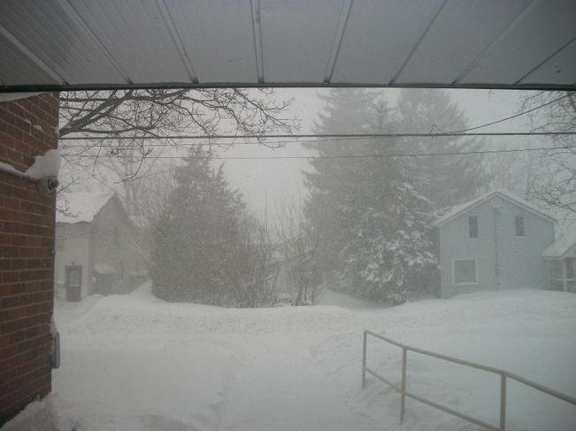 Snow Storm Belleville, Ontario Canada