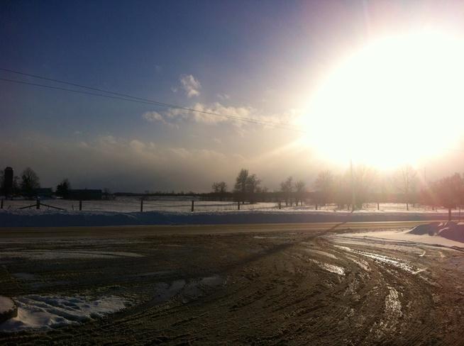 Sunshine Petrolia, Ontario Canada