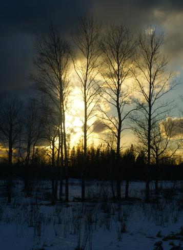 Hiding the sun Shubenacadie, Nova Scotia Canada