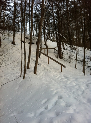 Walking on Winter trails Fitzroy Harbour, Ontario Canada