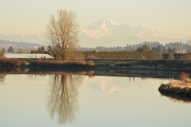 A Beautiful Afternoon Pitt Meadows, British Columbia Canada