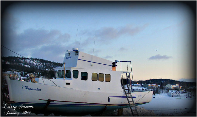 """""""Very Cold and Windy Morning"""" Springdale, Newfoundland and Labrador Canada"""