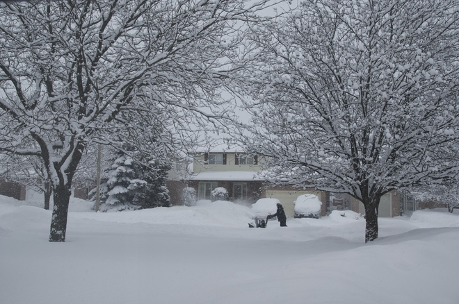 Want some snow? Belleville, Ontario Canada