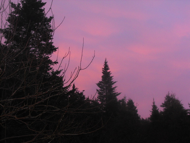 Pink Sky After The Rain Freshwater, Newfoundland and Labrador Canada