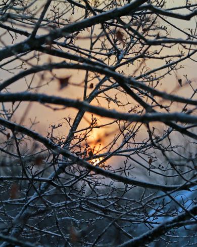 Diffused sunrise Kingston, Ontario Canada