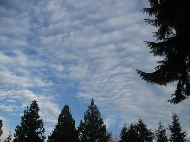 ripples in the sky Surrey, British Columbia Canada
