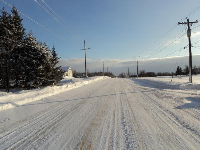 winter O'Leary, Prince Edward Island Canada