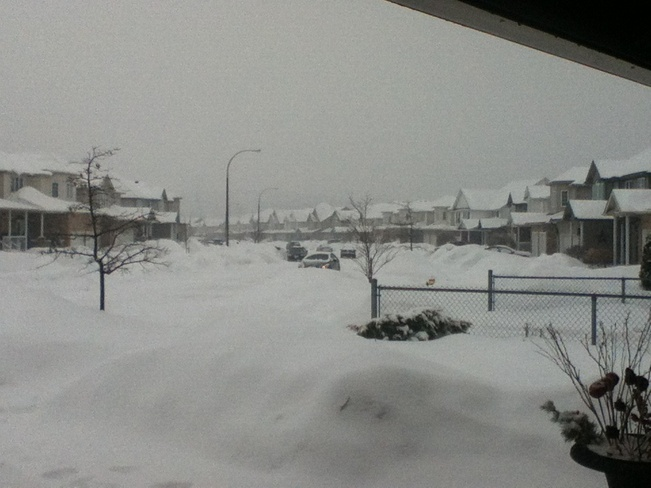 And the Snow Continues Kitchener, Ontario Canada