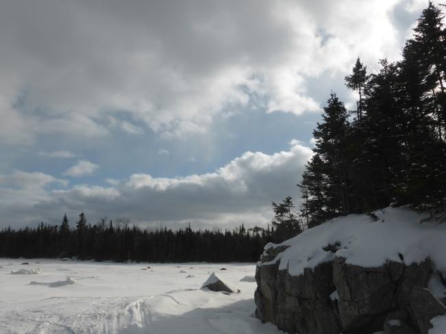 Afternoon Sun Birchy Bay, Newfoundland and Labrador Canada