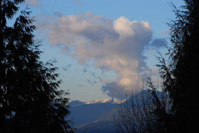 It is a puppy in the clouds Surrey, British Columbia Canada