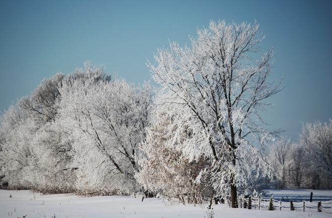 Winter Wonderland Beachburg, Ontario Canada